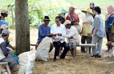 Jokowi di desa