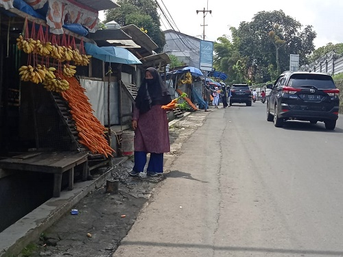 penjual wortel