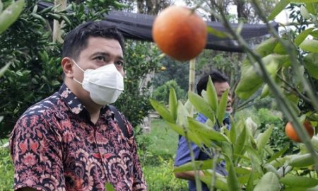 Sekretaris Komisi II DPRD Provinsi Jawa Barat Yunandar Eka Perwira. (Foto : Sidiq /Humas DPRD Jabar).